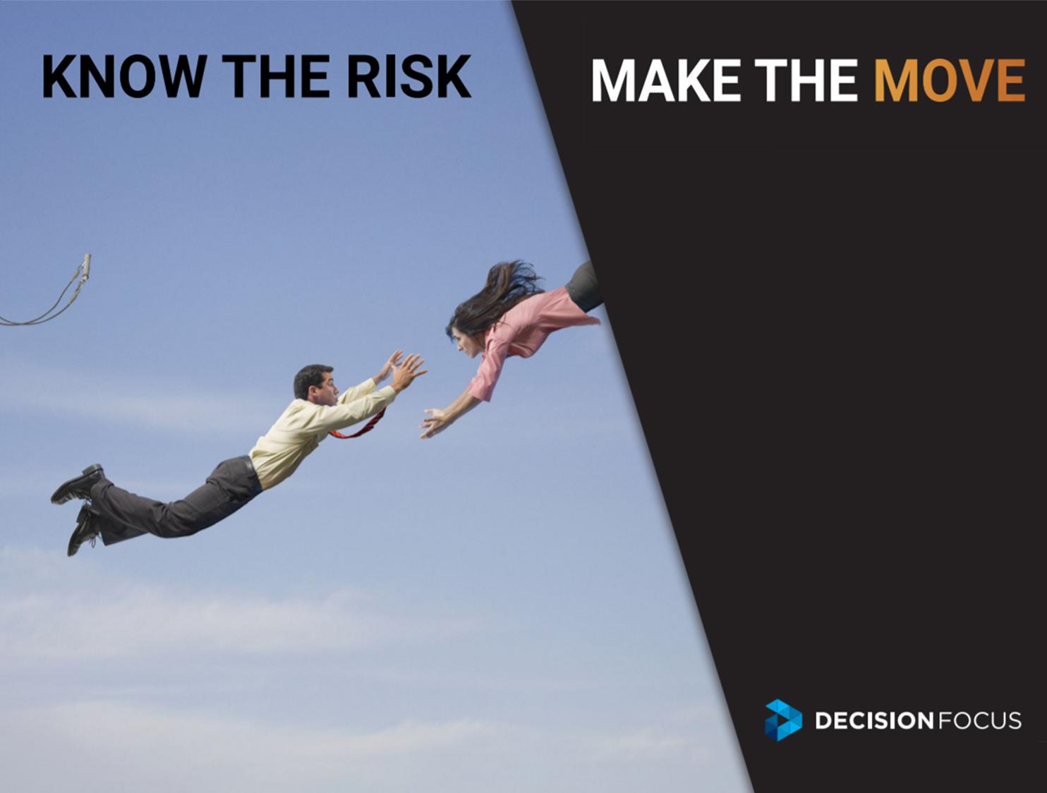 DF book cover_risk